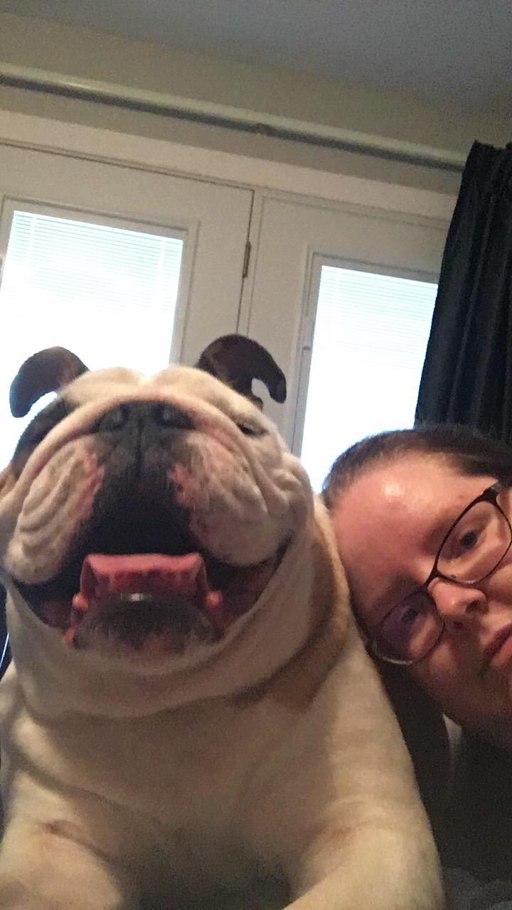 Selfie with bulldog